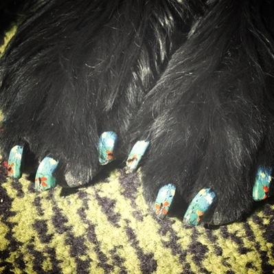 Una nail art applicata sulle unghie dei cani