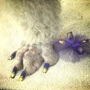 Una bella nail art dedicata ai cani