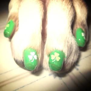 Lo smalto e la nailart verde per i cani