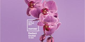 Pantone Radiant Orchid, il colore dell'anno 2014